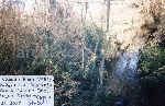 """""""Roma - Località Acqua Santa - V° Rip. Comune di Roma - Condotta fognante fiume Almone. Non è stato possibile rilevare l'impianto segnato dalla planimetria. Roma, 15-12-'95."""""""